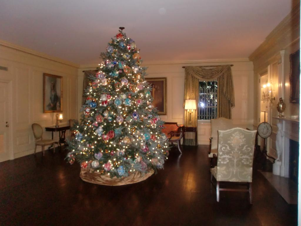 White House Christmas 2009 021.jpg