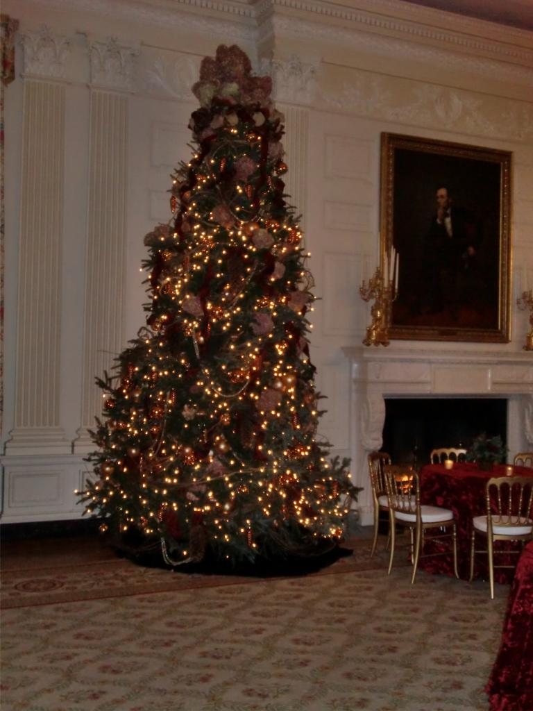 White House Christmas 2009 060.jpg